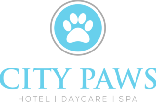 https://citypawspetclub.com/wp-content/uploads/2018/03/CP_Website_Banner-320x210.png